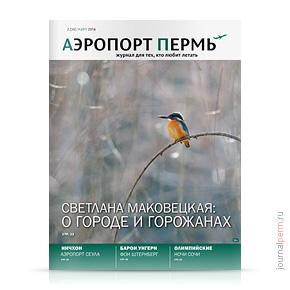 Аэропорт Пермь №26, март 2014